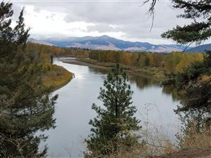 Fall picture of the Clark Fork River